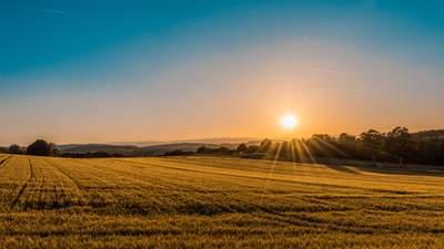 ФОПи не можуть купити землю сільськогосподарського призначення, – Мін'юст