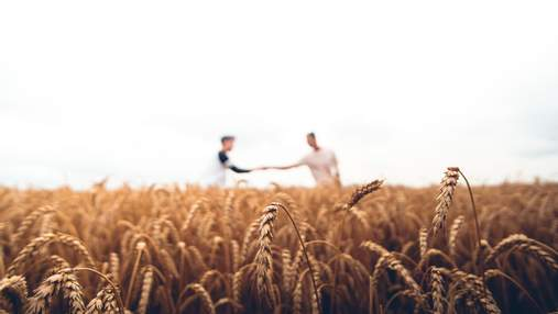 Фермеры получат компенсацию за потерянные посевы, – Шмыгаль